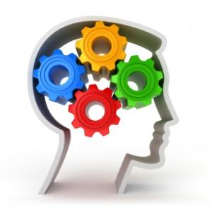 brain types