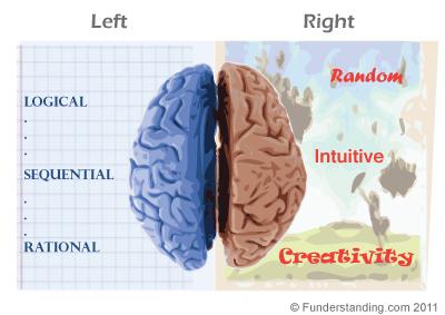 left brain vs right brain function in learning funderstandingleft brain vs right brain function in learning